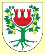Inwestycje w gminie Międzychód